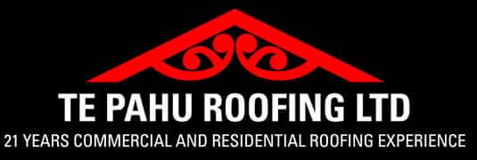 Te Pahu Roofing